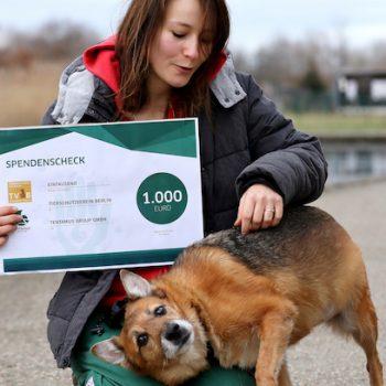 Tentamus Donates to Berlin animal Shelter